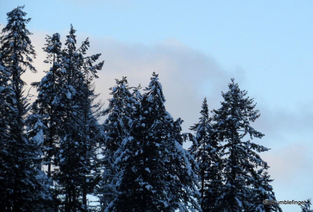 A winter day at Lake Coeur d'Alene