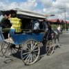 Horse-drawn transport, Santiago de Cuba