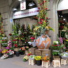The lovely Navarro flower shop, Eixample district of Barcelona