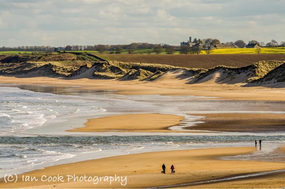 Alnmouth Beach, Northumberland.
