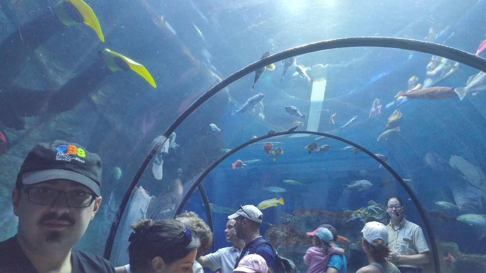 Québec Aquarium