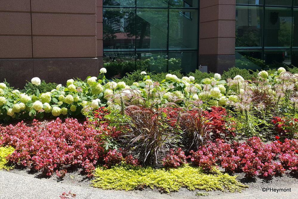 Floral Bouquet at Convention Center