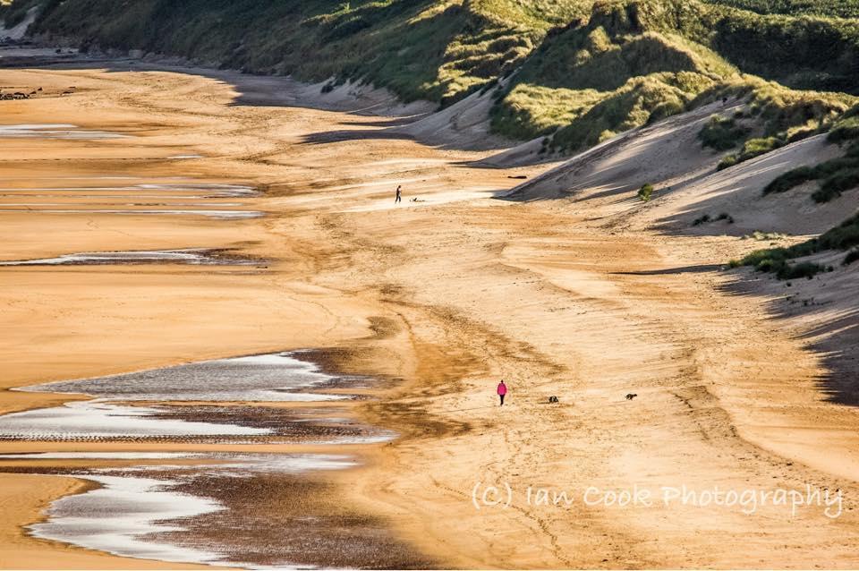 Alnmouth Bay, Northumberland