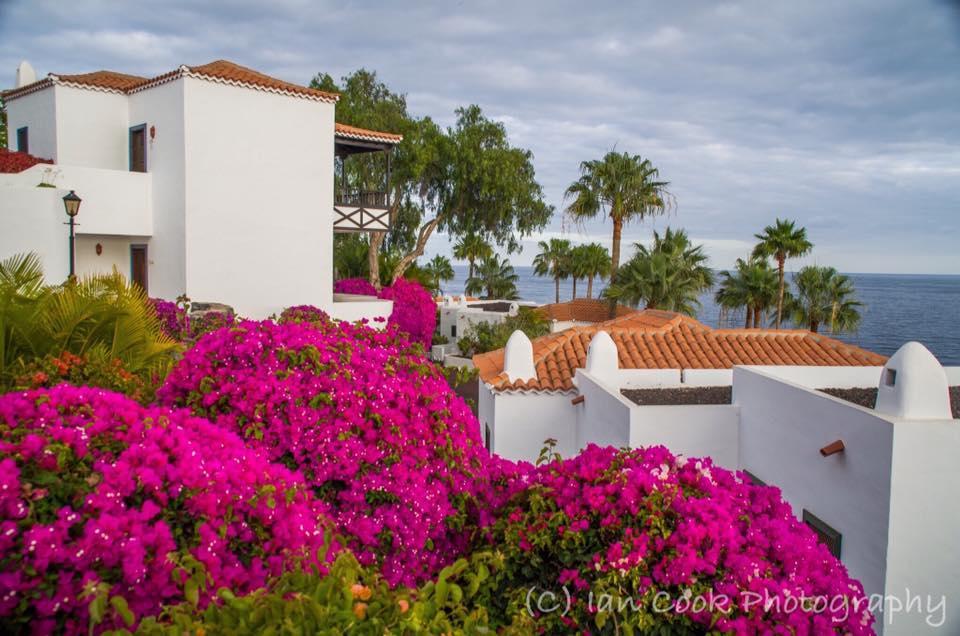 Jardin de tecina, playa de Santiago, Spain, Canary Islands, Spain.
