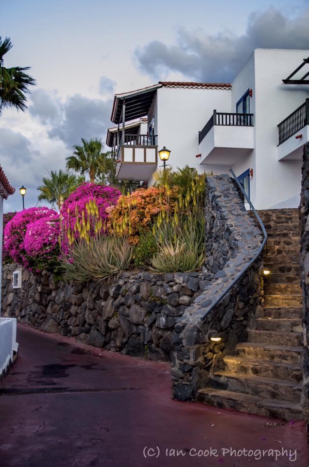 Jardin De Tecina at dawn, Playa De Santiago, Gomera, Canary Islands, Spain