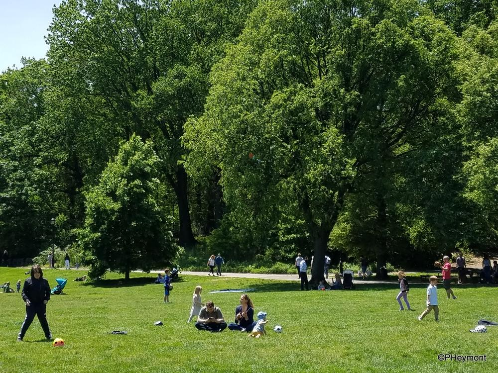 Sunday in Prospect Park