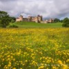 Alnwick Castle Northumberland. Early morning as the sunlight dances across the meadow.