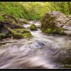 Coldgate Water, Happy Valley nr North Middleton, Northumberland.