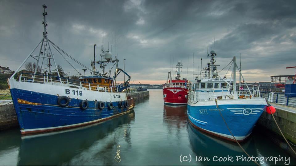 Fishing boats, Royal Quays, Tyne & Wear, UK