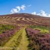 Broadhope, The Cheviots, Northumberland.