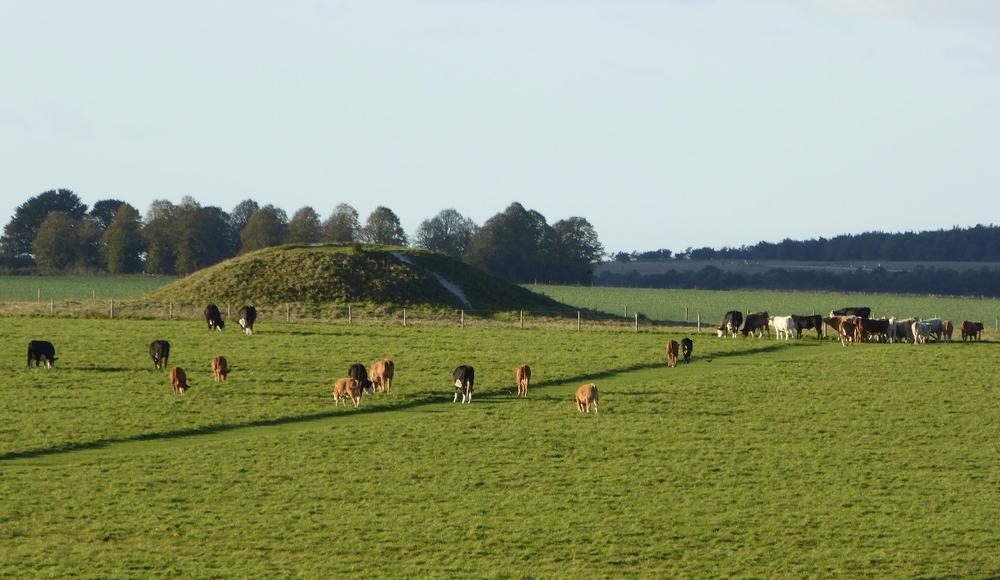 Landscape around Stonehenge, including burial mound