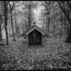 The little house in the forest. Alnwick Northumberland