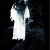 Moonlight apparition, The Alnwick Garden Northumberland