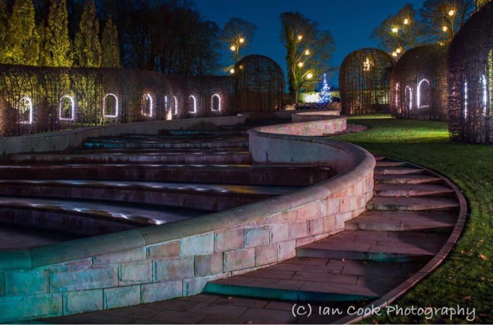 The Alnwick Garden Christmas lights.