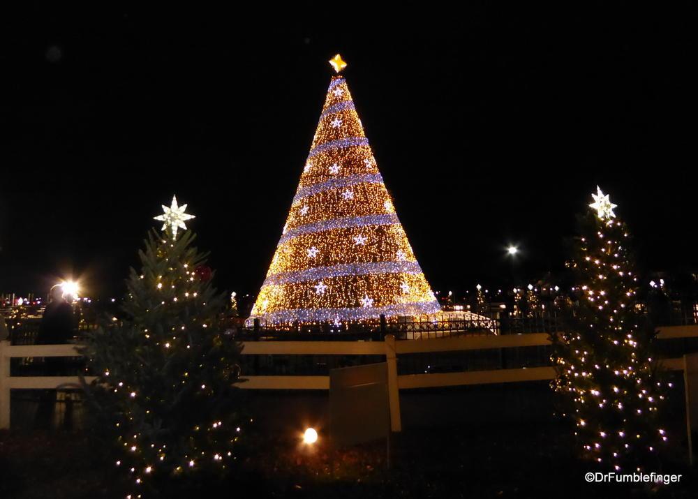 Washington Dc Christmas.National Christmas Tree Washington Dc Travelgumbo