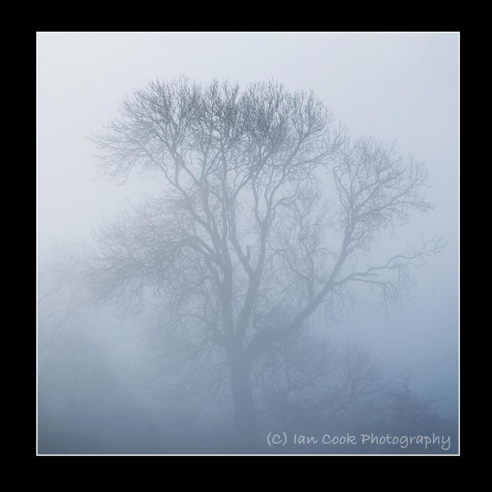 Misty Blue. Reeth Swaledale North Yorkshire.