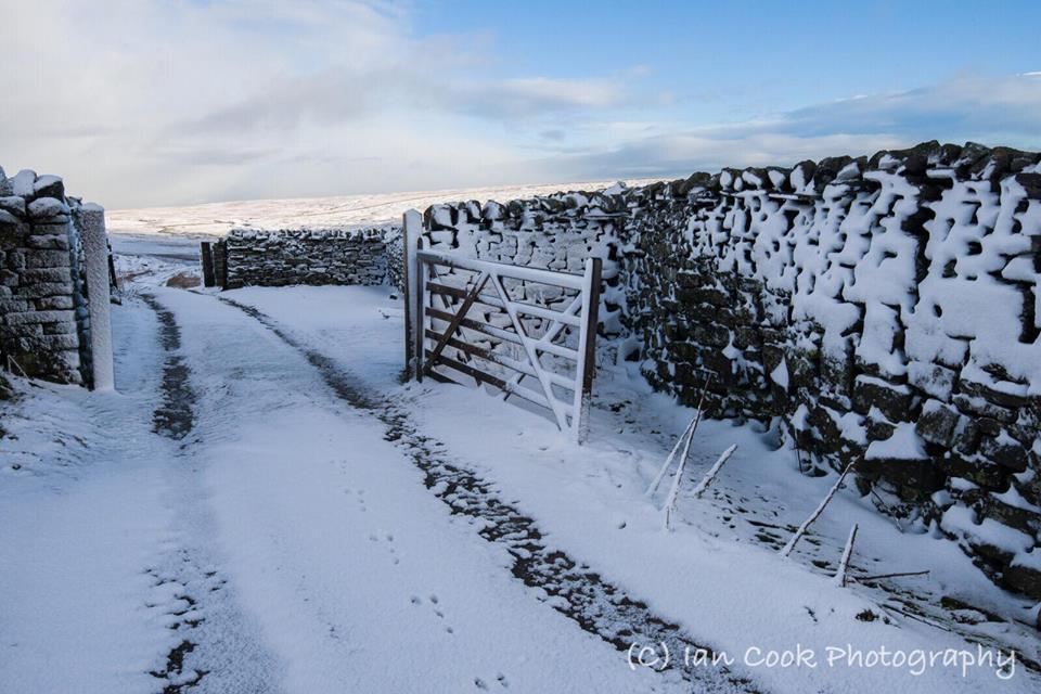 Melbecks Moor Swaledale North Yorkshire.