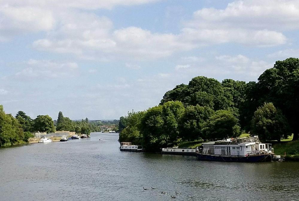 The Thames near Hampton Court Palace