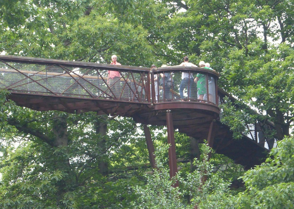 Tree-top walk, Kew Gardens, London