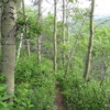 Time for a hike in the Mountains!  Tatshenshini -Alsek Provincial Park
