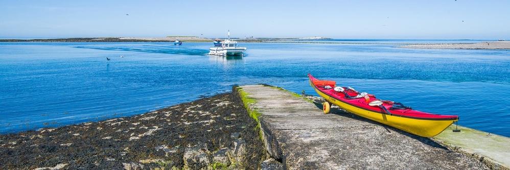 Inner Farne, Farne Islands, Northumberland.