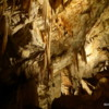 A visit to Postojna Cave is a highlight of any visit to Slovenia