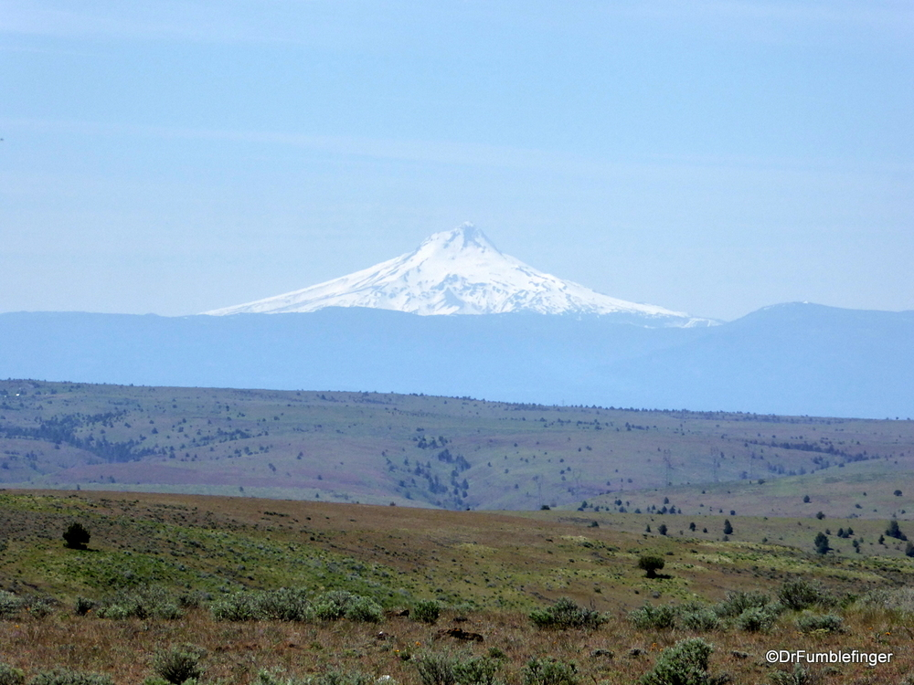 Mt. Hood viewed from the east