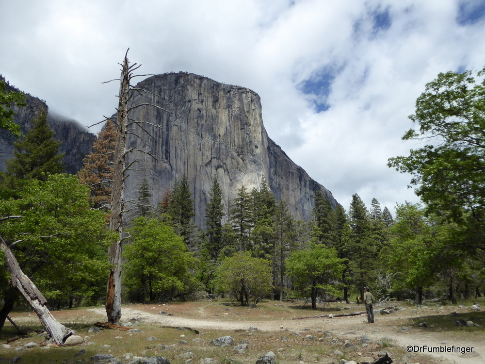El Capitan, the largest piece of granite in the world.  Yosemite National Park