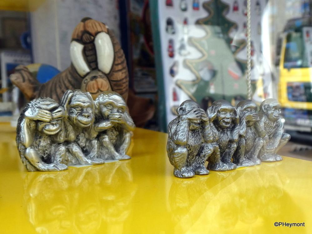 Fourth Monkey Mystery