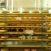 Massive wheels of gouda cheese, Thunder Oaks cheese Farm, Thunder Bay