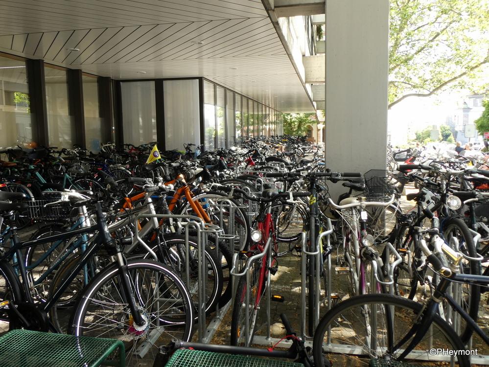 Employee Parking Lot, Basel University Hospital