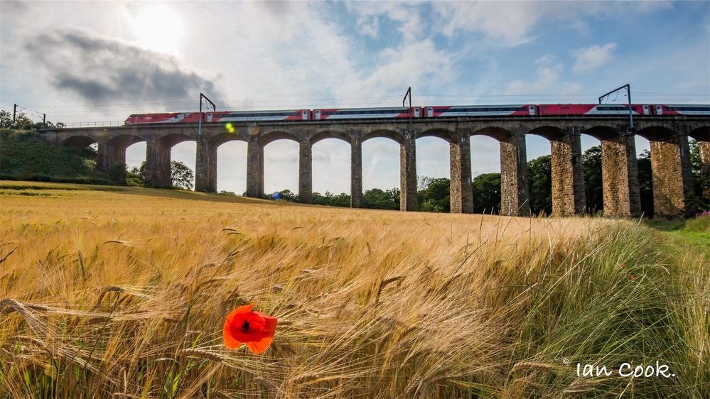 East Coast Mainline, viaduct near Alnmouth, Northumberland.