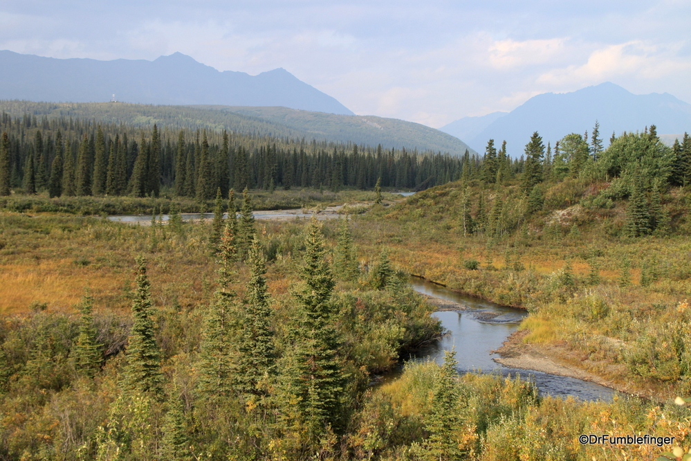 Some of the gorgeous scenery just south of Denali National Park
