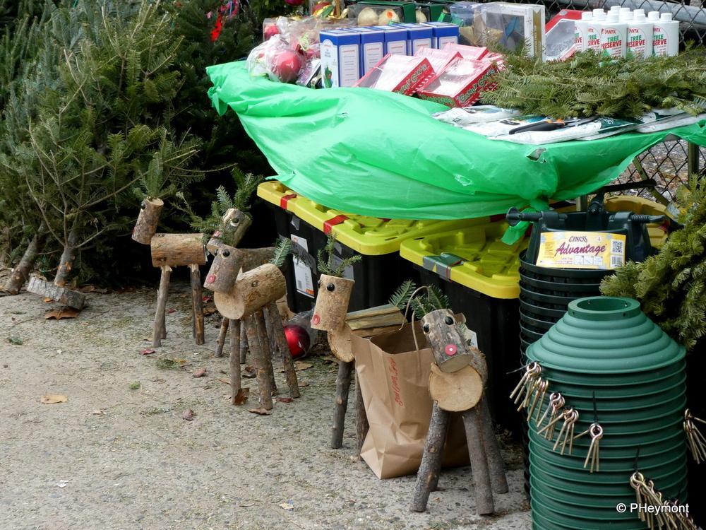 Santa's Tiny Reindeer