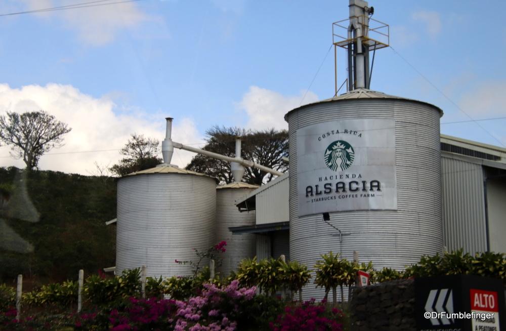 Starbuck's Alsacia Coffee Plantation, Costa Rica