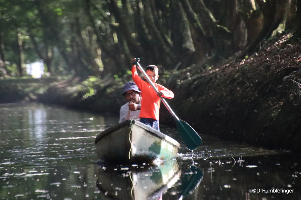 Paddling around Tortuguero National Park
