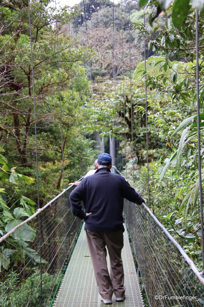 Crossing one of the Hanging Bridges in Monteverde, Costa Rica