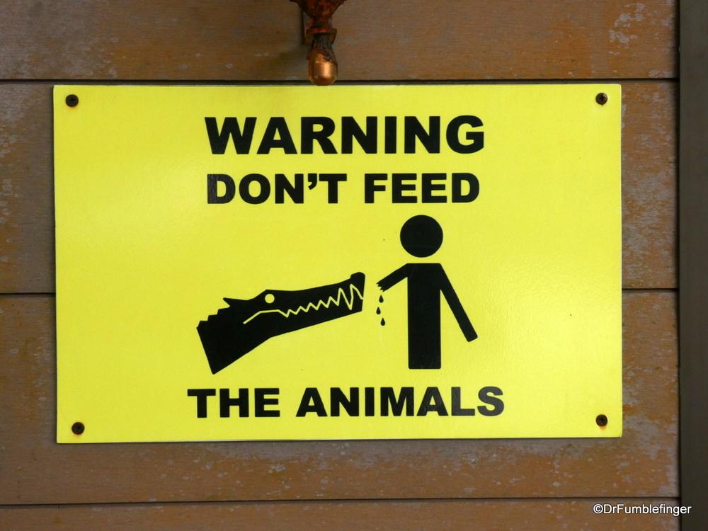 Some pragmatic advice, Monteverde, Costa Rica