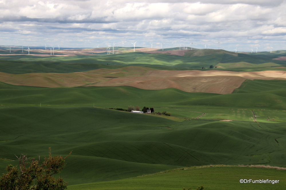Views of the Palouse from Steptoe Butte State Park