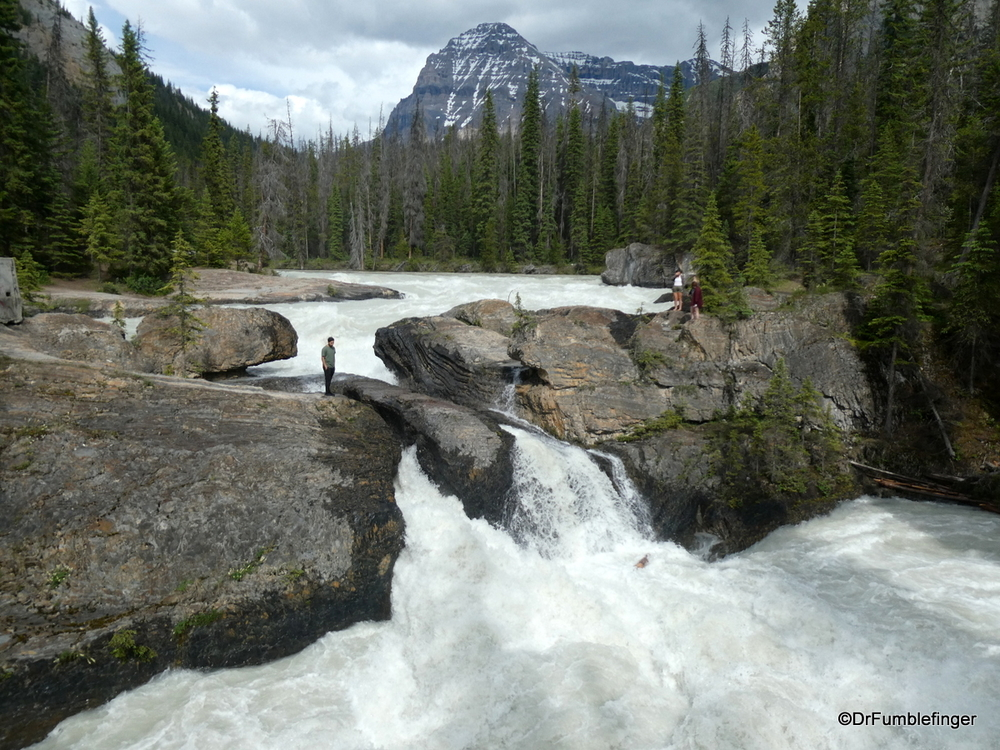 Kicking Horse River roaring with spring thaw, Yoho National Park