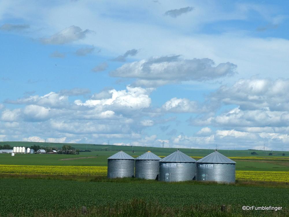 Alberta's bountiful prairies  (near Nanton)