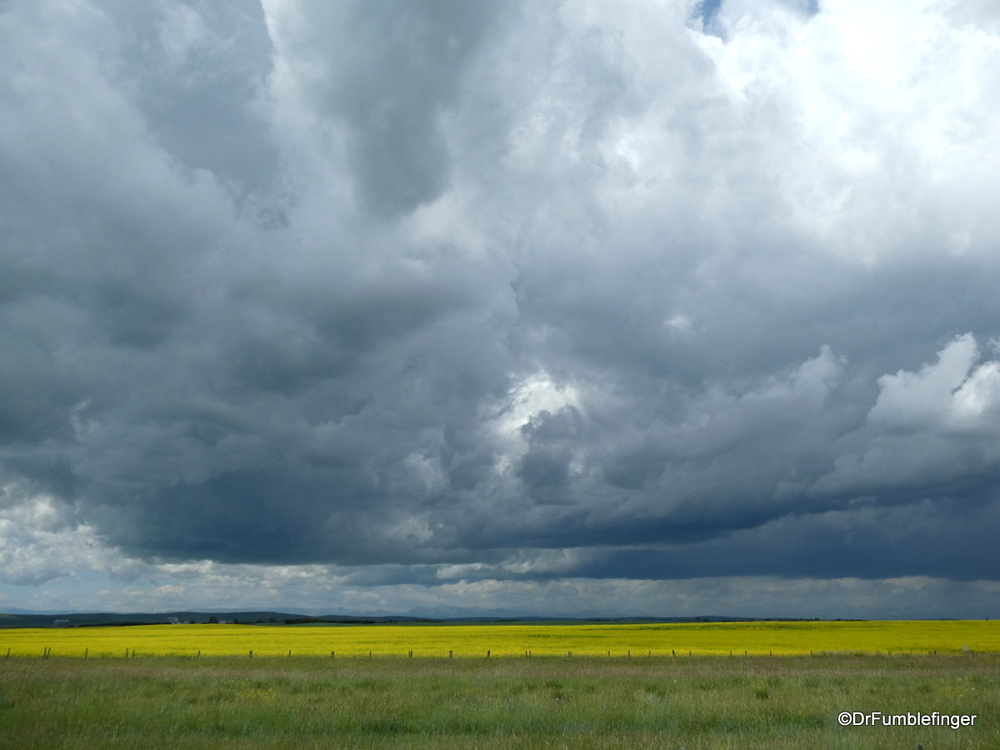 Approaching thunderstorm, near Nanton