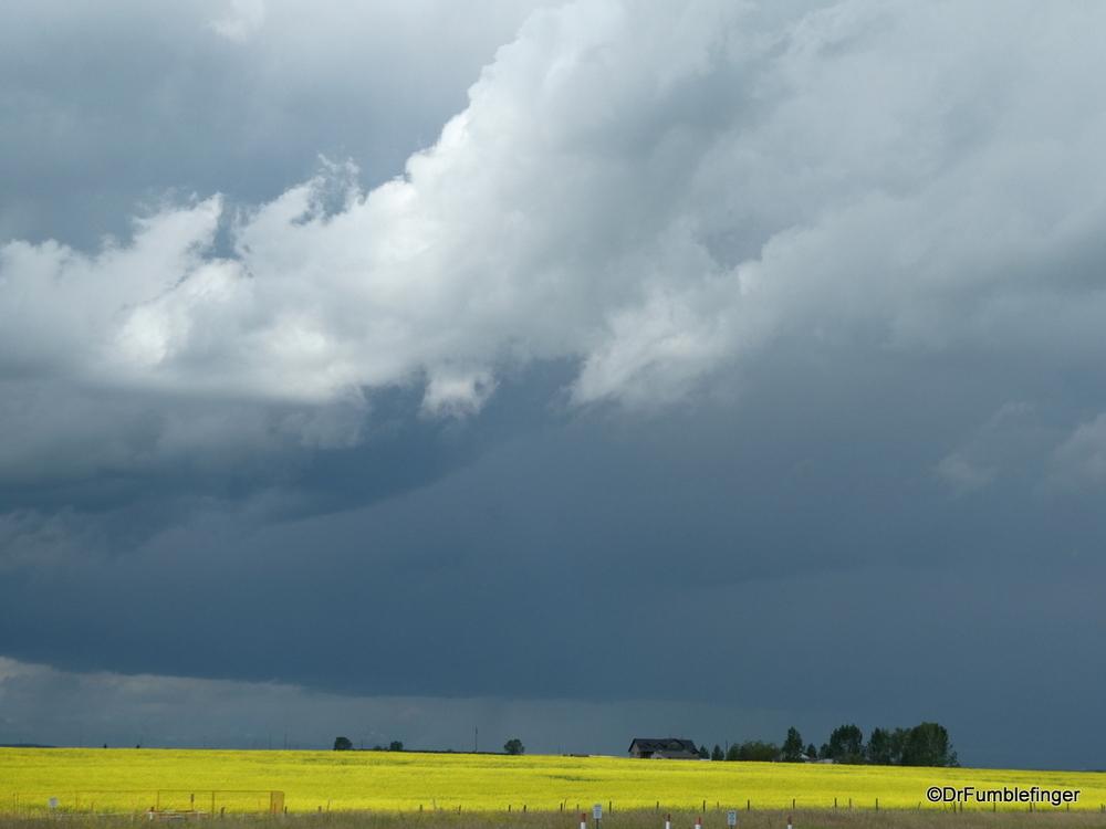 Approaching thunderstorm, near Nanton
