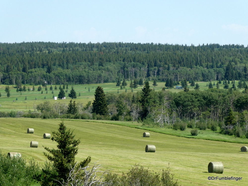 Cypress Hills Interprovincial Park, Alberta
