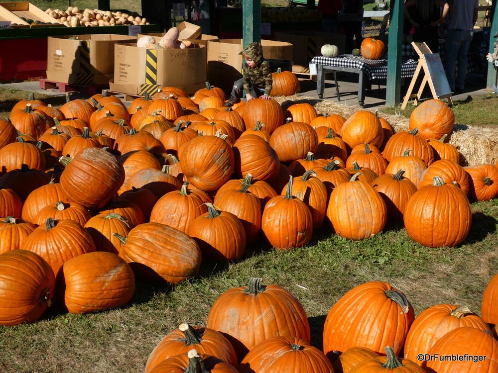 Fall Festival, Green Bluff, Washington