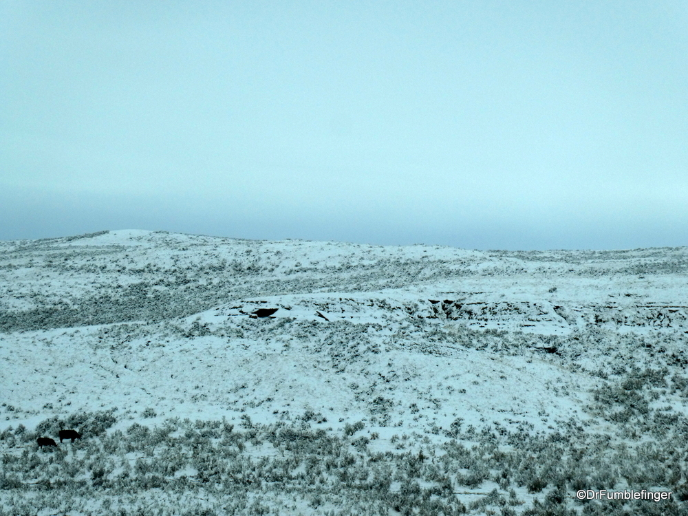 Fresh snow on the plains of Wyoming, mid-October