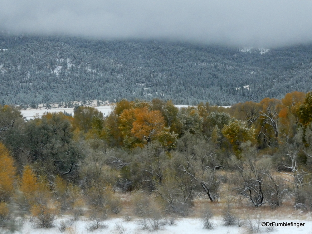 Fall Colors and early Fall snow, near Bozeman, Montana