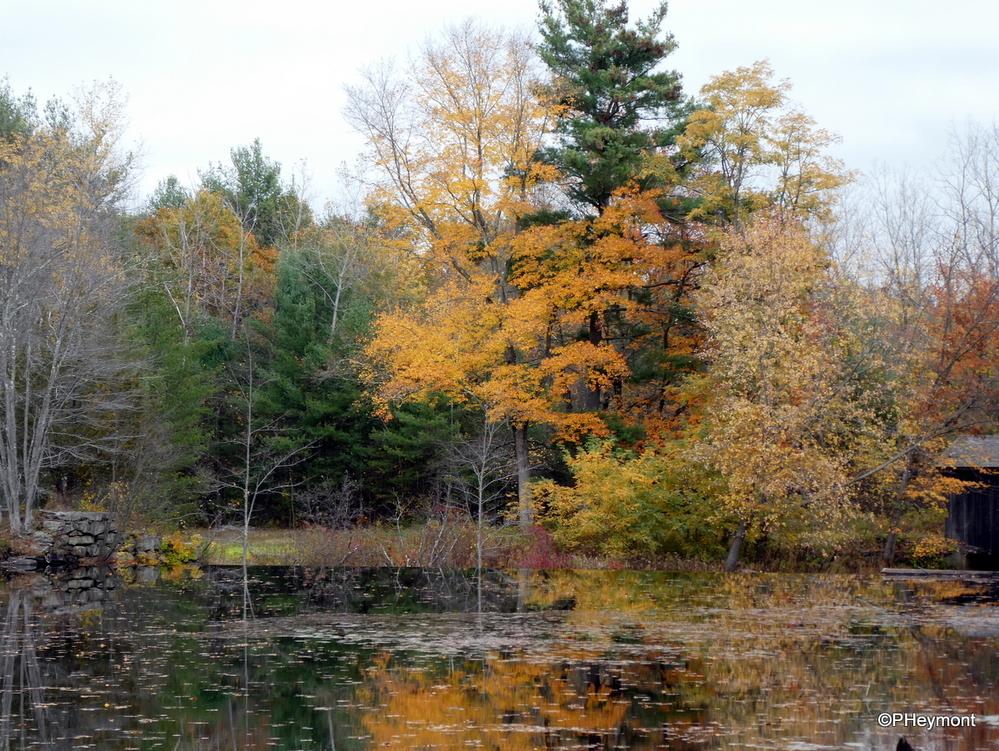Autumn colors, Sturbridge, Massachusetts