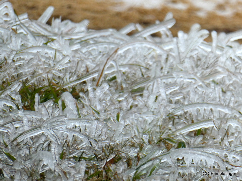 Grass coated in ice, October Ice Storm, Oklahoma City