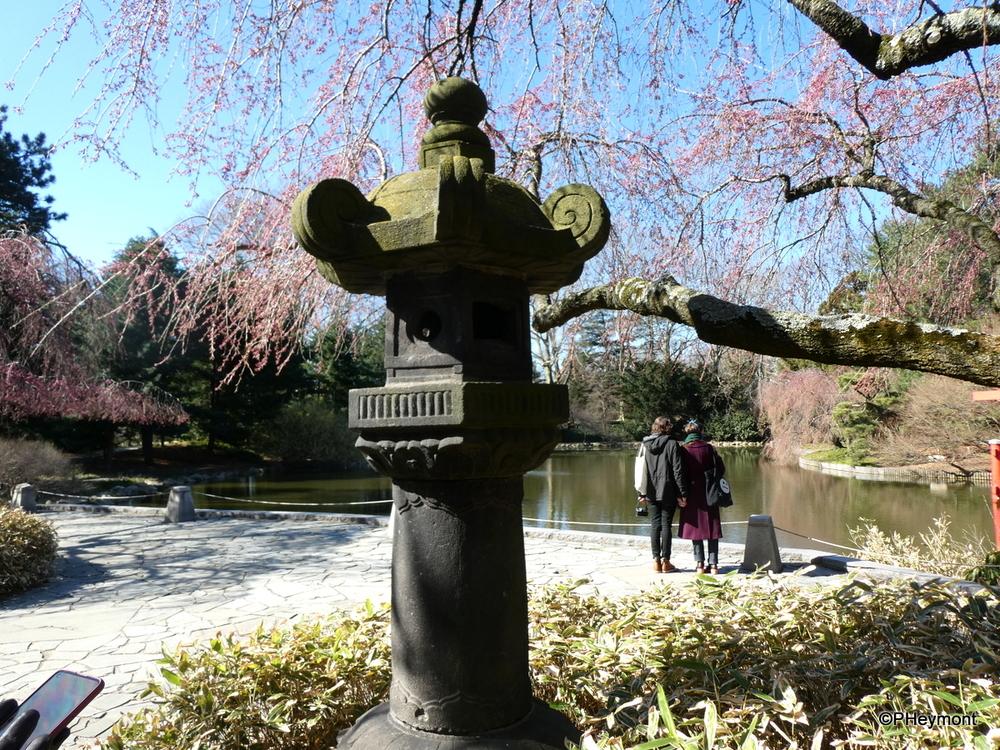 Japanese Lantern, Brooklyn Botanic Garden